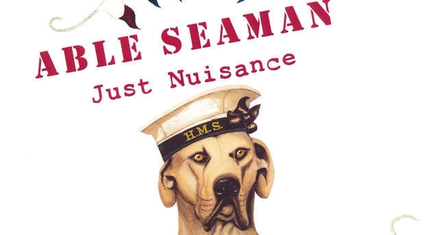 Just Nuisance book launch, able seaman, Chavonnes Battery