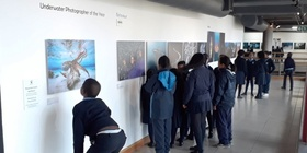 Underwater photographer of the year, photo exhibition, school boy