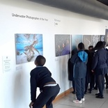 School excursion, Underwater Photographer of the Year, Photo Exhibition.