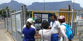 V&A Waterfront, Walking Tours, Guided Tours